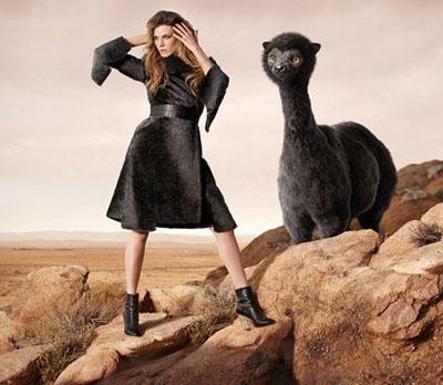 Wonder world fur