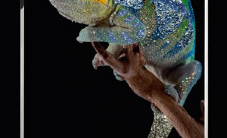 Visionnaire ospita la mostra 'Animalia'