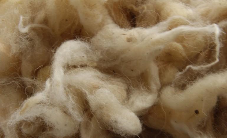 Cotone e lana, prezzi al massimo da 3 anni