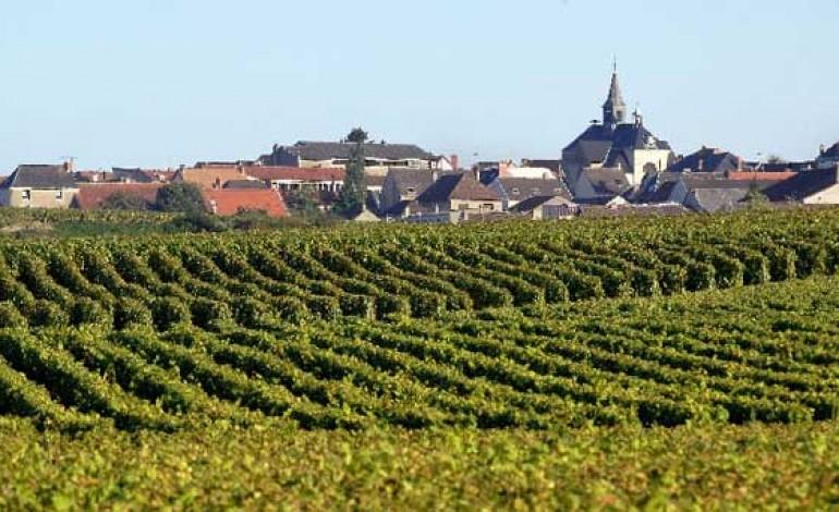 La Francia candida la Champagne per l'Unesco
