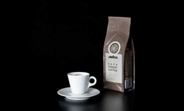Lavazza punta al lusso con il Kafa Forest Coffee