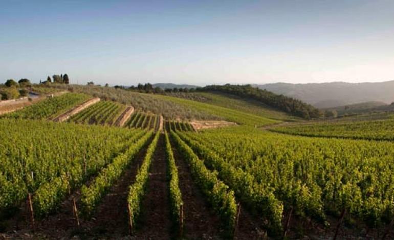 I best 50 vini italiani, al Biwa vince un Valpolicella
