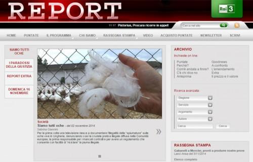 Frame del servizio dal sito web Report