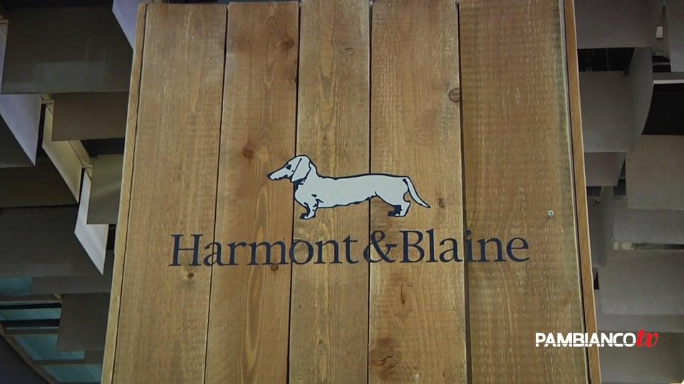 Harmont blaine 27 store in cina nei prossimi 5 anni for Blaine storage