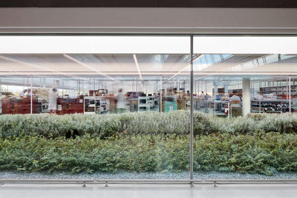 Prada, ad Arezzo la nuova 'fabbrica-giardino'