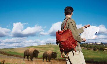 Il Bisonte venduto ai giapponesi di Look