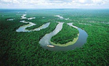 Lvmh, niente Biarritz, ma 10 mln € all'Amazzonia