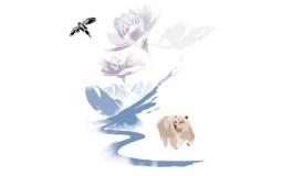 Kering, impatto 'positivo' su biodiversità entro 2025