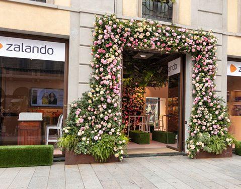 100581905186 Zalando porta in Italia la cosmesi del Nord Europa